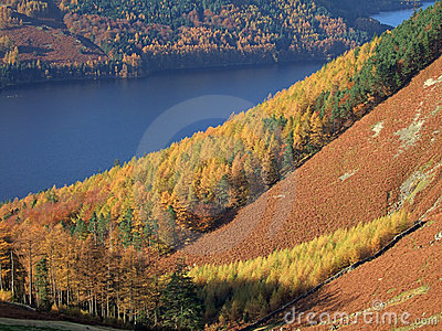 Autumn Colours by Thirlmere