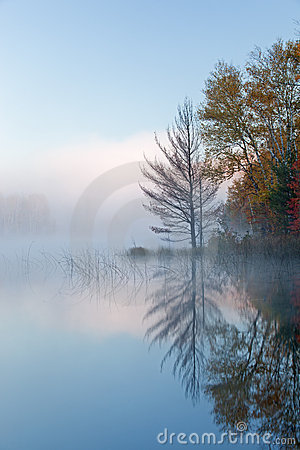 Autumn Council Lake in Fog