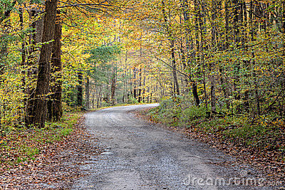 Autumn Country Road Stock Photos - Image: 11834033