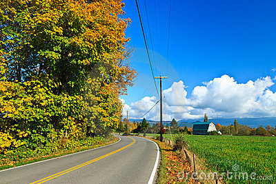 Autumn country road, Sultan Washington