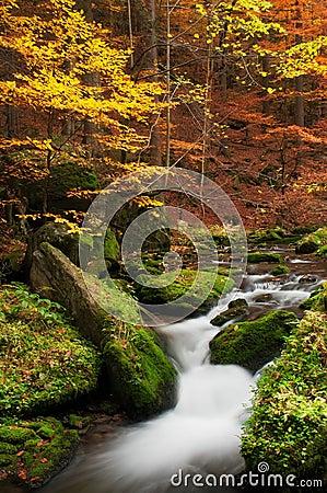 Free Autumn Creek Stock Image - 22826241