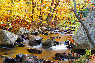Autumn Creek with trees and rocks