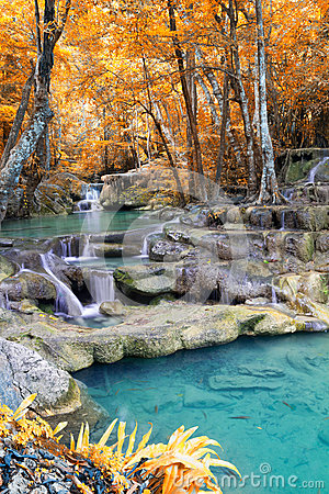 Free Autumn Deep Forest Waterfall Stock Images - 29115444