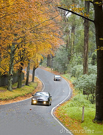 Free Autumn Driving Stock Photography - 4585402