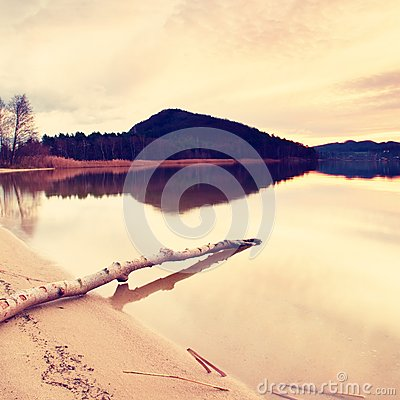 Free Autumn Evening At Lake After Sunset. Wet Sand Beach With Dry Tree  Fallen Into Water. Colorful Sky. Stock Photo - 63893110