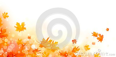 Autumn. Fall abstract background with colorful leaves and sun flares Stock Photo