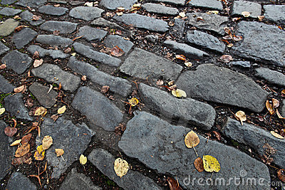 Autumn/fall cobblestone background