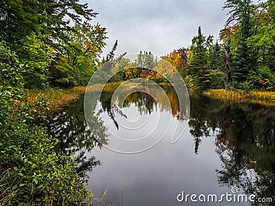 Autumn Fall Color Marsh Bonnechere 2 Provincial Park