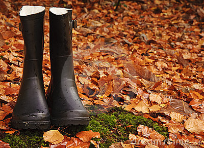 Autumn Fall concept wellington boots leaves