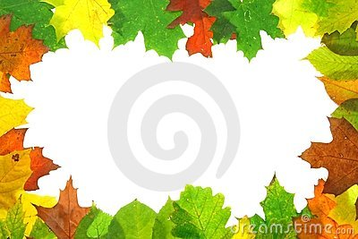 autumn fall leaves - frame