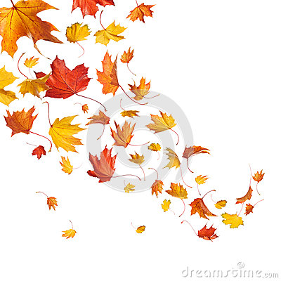 Free Autumn Falling Leaves Royalty Free Stock Photography - 27300587