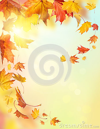 Free Autumn Falling Leaves Stock Image - 27315451