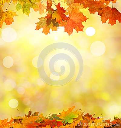 Free Autumn Falling Leaves Stock Image - 45174951