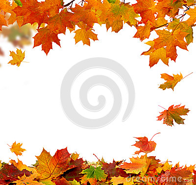 Free Autumn Falling Leaves Stock Image - 45451731