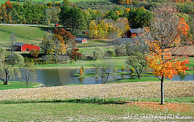 Autumn Farm Scene