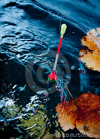 Autumn fishing.