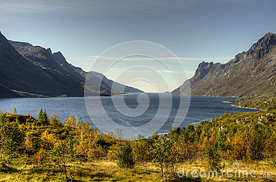 Autumn Fjord