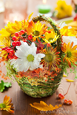 Free Autumn Flowers Stock Images - 20550464