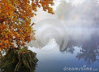 Autumn fog above the lake