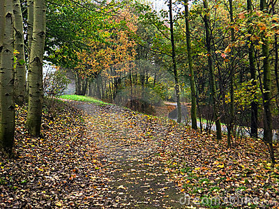Autumn Footpath