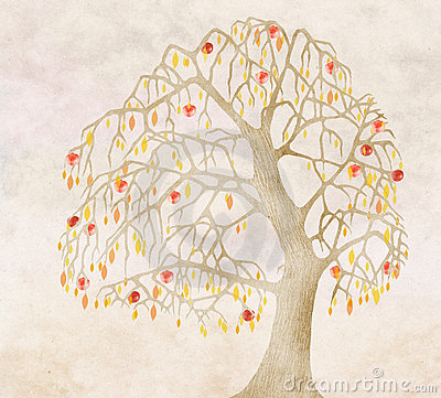Free Autumn For An Old Apple Tree Stock Image - 3427191