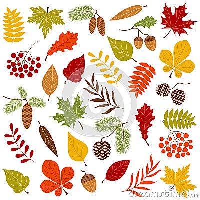 Free Autumn Forest Stock Photos - 43118303