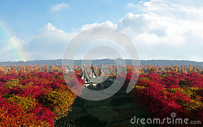 Autumn Forest Of Rainbow Country Town
