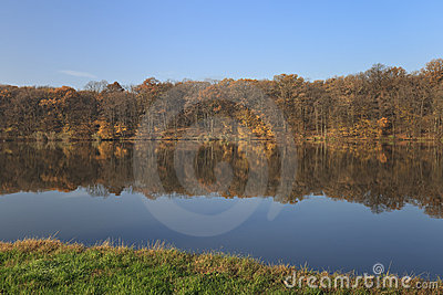 Autumn forest shoreline