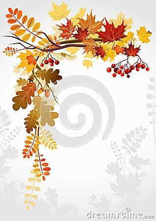 Free Autumn Frame Royalty Free Stock Image - 15565956