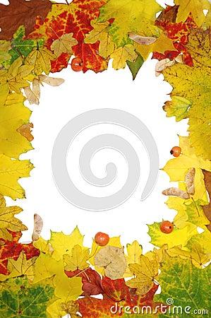 Free Autumn Frame Royalty Free Stock Image - 3575126