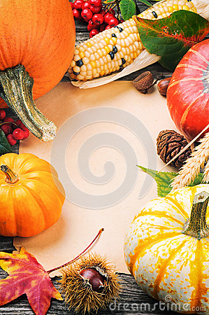 Autumn frame with pumpkins, corn and leaves