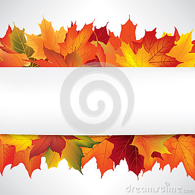 Free Autumn Frame With Leaves. Fall Background With Copy Space. Stock Photo - 46690750