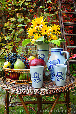 Free Autumn Fruit - In The Garden Stock Images - 21419874