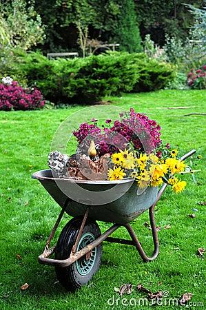Free Autumn Garden Harvest Stock Images - 33768094