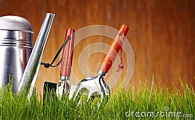 Autumn garden tools