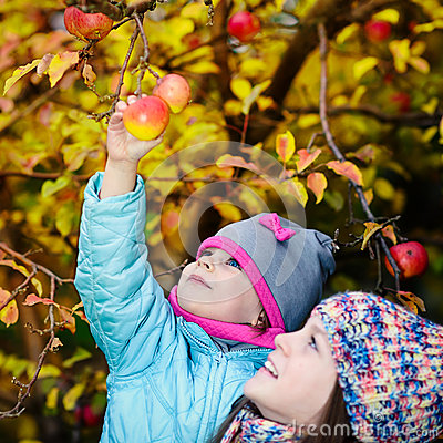 Free Autumn Girl Picking Apple From Tree Stock Photography - 64594202