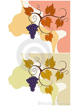 Autumn grape vines backgrounds set. Vector Illustration