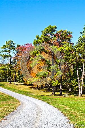 Autumn Gravel Road