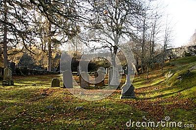Autumn in a graveyard
