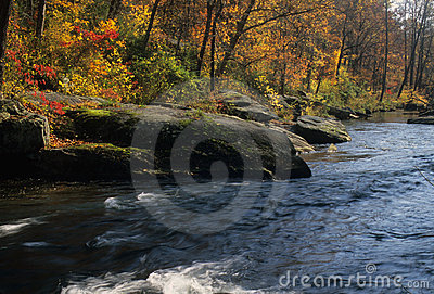Autumn on Gunpowder River