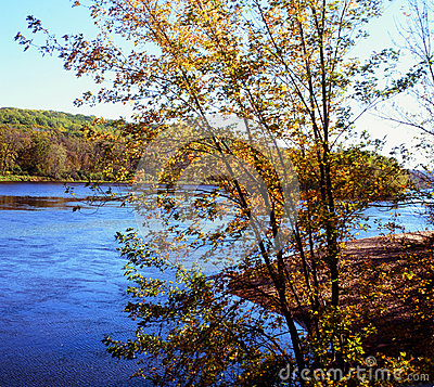 Free Autumn Highlights On The St. Croix River - Minnesota Royalty Free Stock Photos - 47555858