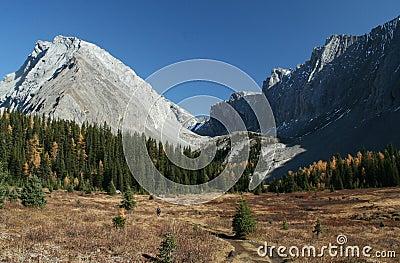 Autumn, hiker in meadow