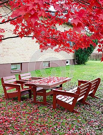 Autumn in home garden