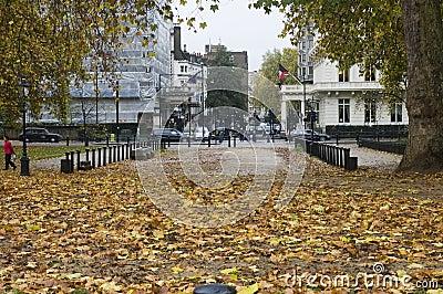 Autumn at Hyde Park