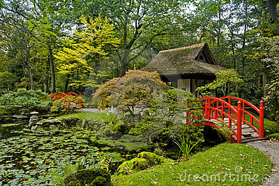 Autumn in japanese garden