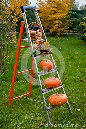 Free Autumn Ladder Of Fruits Of A Harvest Royalty Free Stock Photography - 130096327