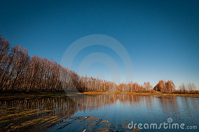 Autumn lake surrounded by bare trees.
