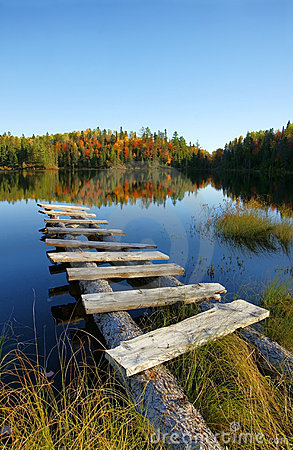 Autumn lake vertical
