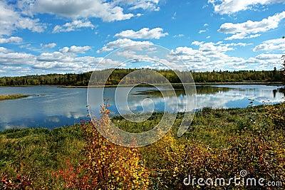 Autumn lake view
