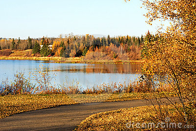 Autumn lake view in elk island